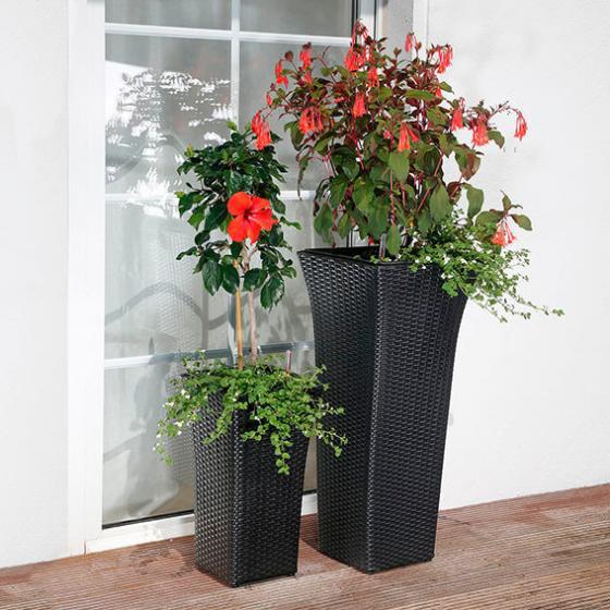 outdoor rattan pflanzs ulen 2er set mit zubeh r von g rtner p tschke. Black Bedroom Furniture Sets. Home Design Ideas