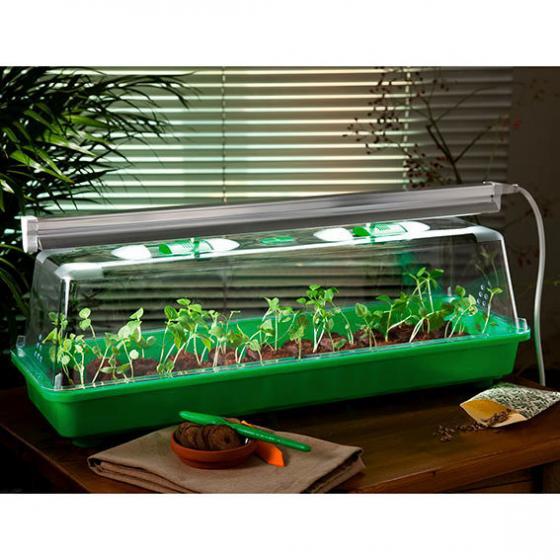 zimmergew chshaus lucio komplett mit beleuchtung von g rtner p tschke. Black Bedroom Furniture Sets. Home Design Ideas
