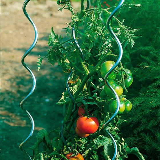 5er-Set Tomatenspiralstäbe, 110 cm