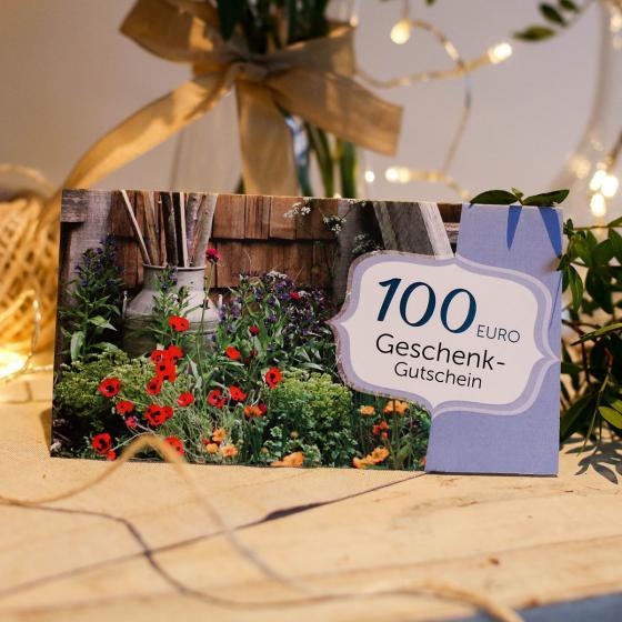 100,- Euro Geschenk-Gutschein