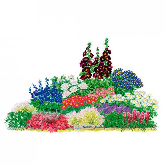 Sortiment Faszinierende Schmuckstauden, 23 Pflanzen