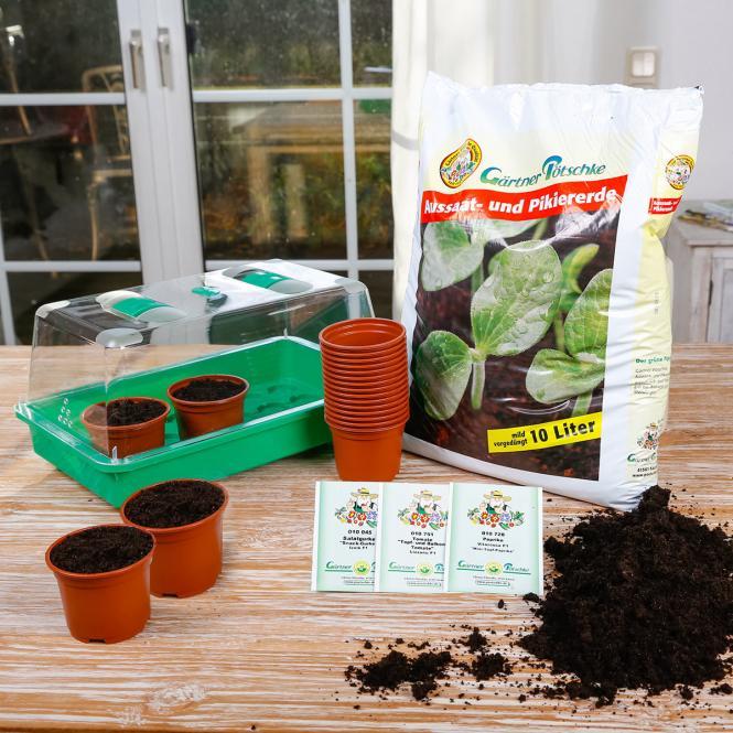 Balkon-Gemüse Anzucht-Set