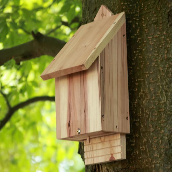 """Fledermauskasten """"Naturo"""" aus Holz, braun"""