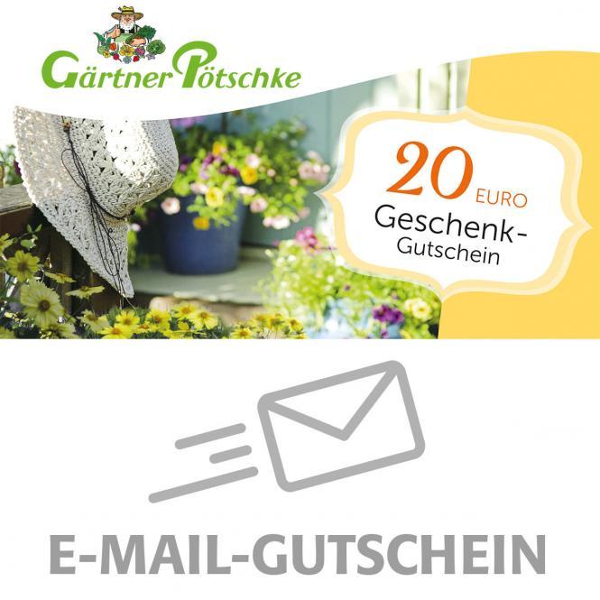 20,- Euro Online-Geschenkgutschein