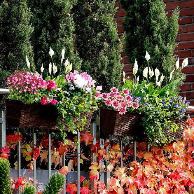 Outdoor-Rattan-Balkonkasten mit Bewässerungssystem, 19x60x19 cm, kaffee braun