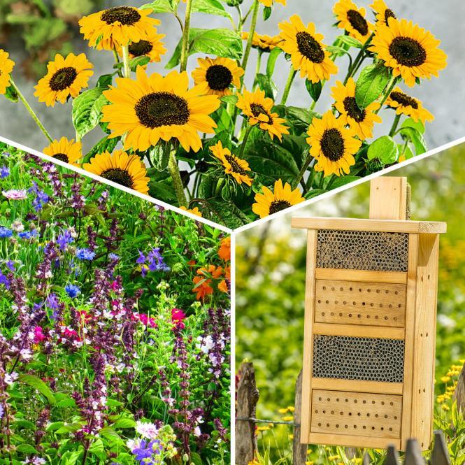 *NEU*: Bienenhaus-Komplettset aus Holz, braun
