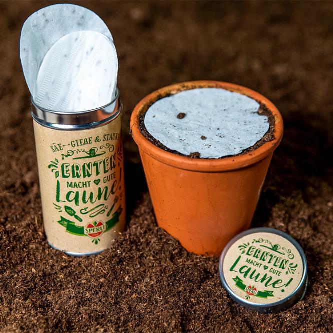 Saatscheiben in einer Aufbewahrungsdose - Kräutermischung