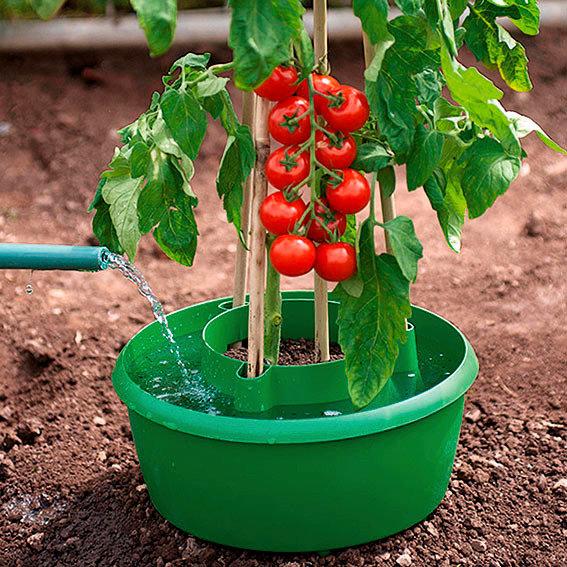 rankhilfe tomaten preisvergleiche erfahrungsberichte und kauf bei nextag. Black Bedroom Furniture Sets. Home Design Ideas