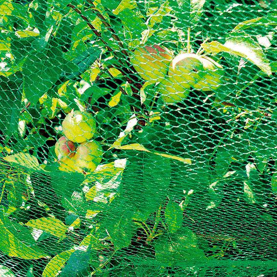Vogelschutznetz fein, 5 x 2 Meter