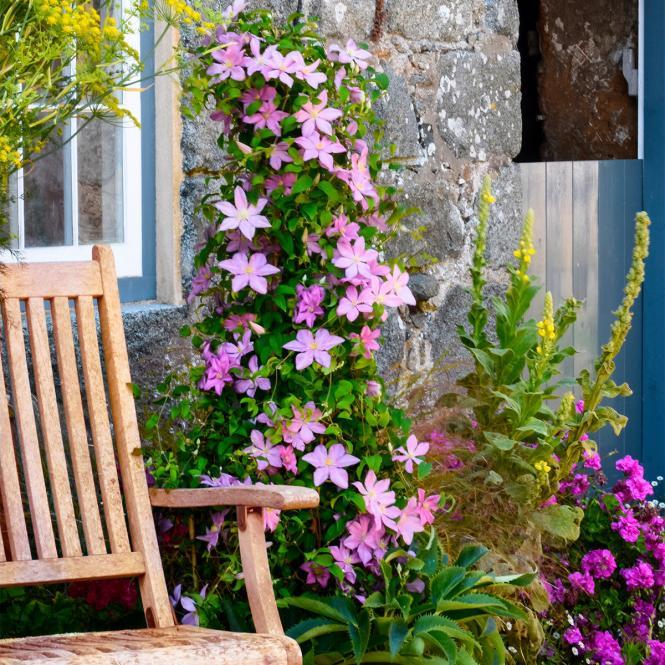 shop balkon oasebalkon oase. Black Bedroom Furniture Sets. Home Design Ideas