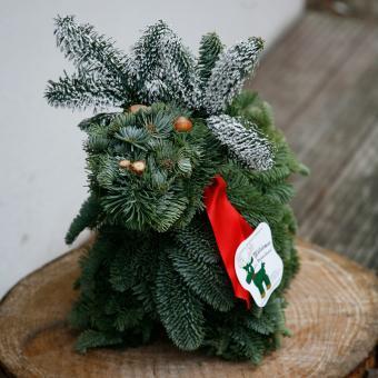 Waldemar der Weihnachtselch | #10