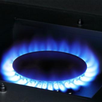 Gas-Räuchergrill Portland XL   #10