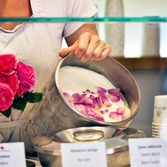 Essbare Culinaric Rose, rosa-apricot, im ca. 22 cm-Topf | #11