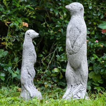 Erdmännchenpaar, 2er-Set | #11