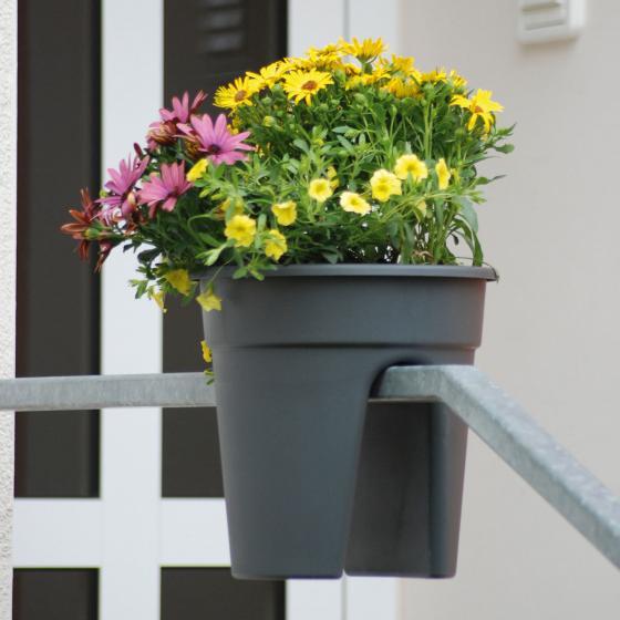 Geländertopf Flowerclip | #2