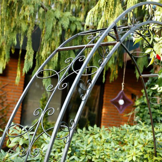Rosenbogen Trend Garden | #2