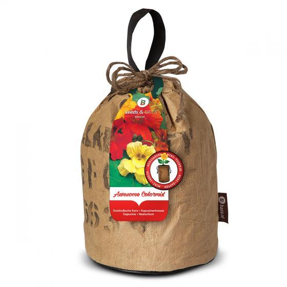 Kapuzinerkressesamen im RAG-Pflanzbeutel | #2