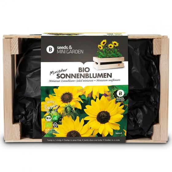 Mini-Garten-Kiste mit Mini-Sonnenblumensamen | #2