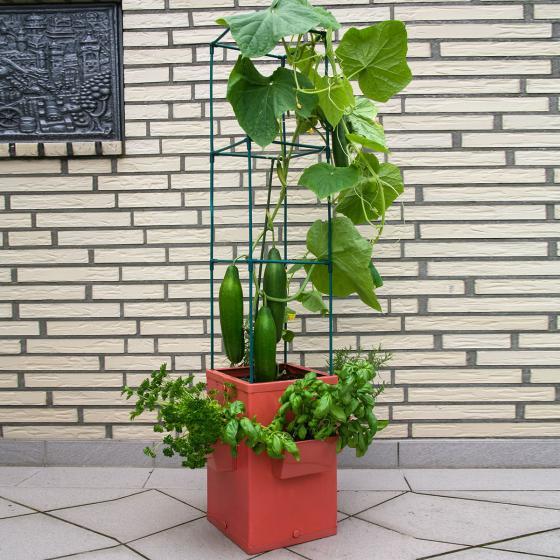 Gemüse- und Pflanztower, hoch | #2
