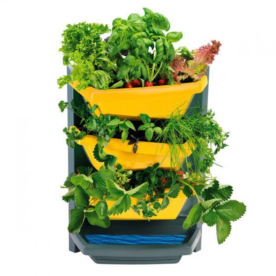 Vertical Garden Grundelement, safran | #2