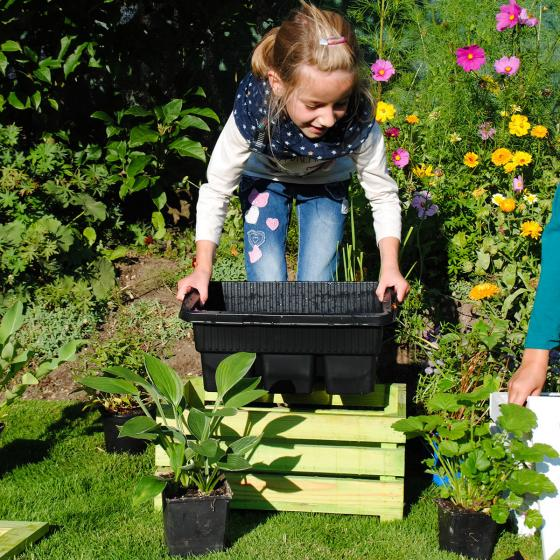 Mini-Teichholzkiste, 45x32x21 cm mit 4 Wasserpflanzen | #2