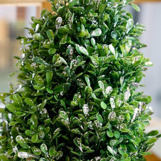 LED-Buchsbaum Winterzauber, silber | #2