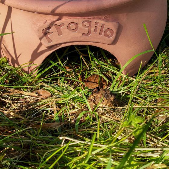 Frosch- und Krötenhaus Frogilo | #2