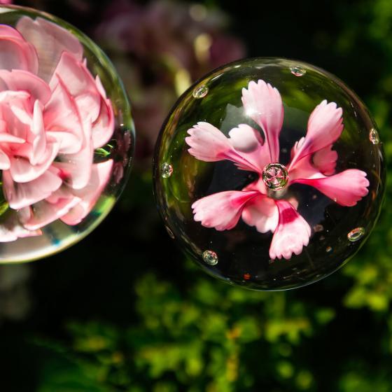 Glaskunst-Stecker pinker Blütentraum inkl. Stab, 2er-Set, 6x100 cm | #2