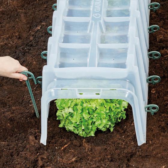 Bodenanker, 10 Stück für Pflanztunnel SUNNY | #2