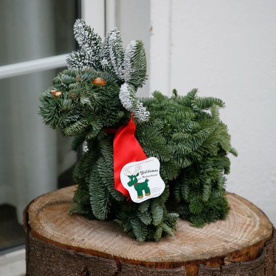 Waldemar der Weihnachtselch | #2