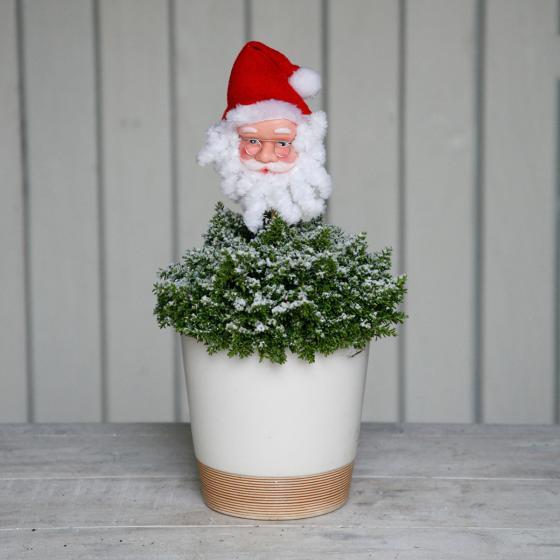 Glitzer Veronika mit Weihnachtsmann | #2