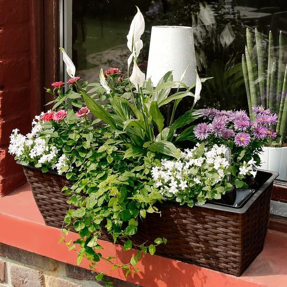 Outdoor-Rattan-Balkonkasten mit Bewässerungssystem, 19x60x19 cm, kaffee braun | #2