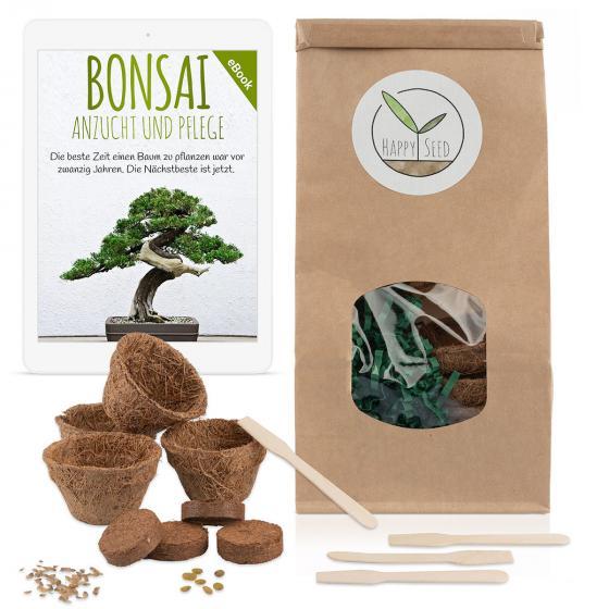 Bonsai Starter Kit Anzuchtset | #2