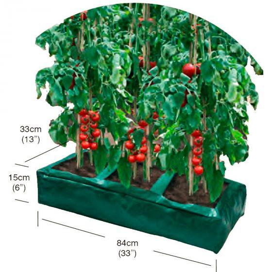 Tomaten-Anzucht-Box, 84 x 33 x 15 cm, PE, grün | #2