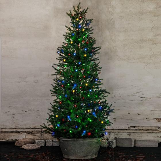 Star LED-Baumvorhang Christmas Joy, 200 cm, Kunststoff, bunt | #2