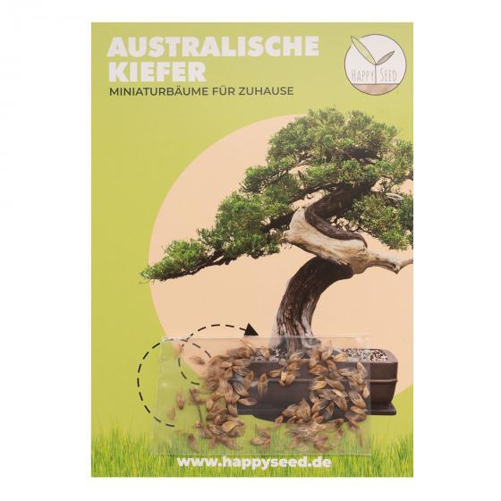 Bonsai Samen Australische Kiefer | #2