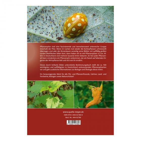 Faszinierende Pflanzenpilze Erkennen und Bestimmen | #2