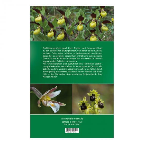 Die Orchideen Deutschlands - Finden und Bestimmen | #2