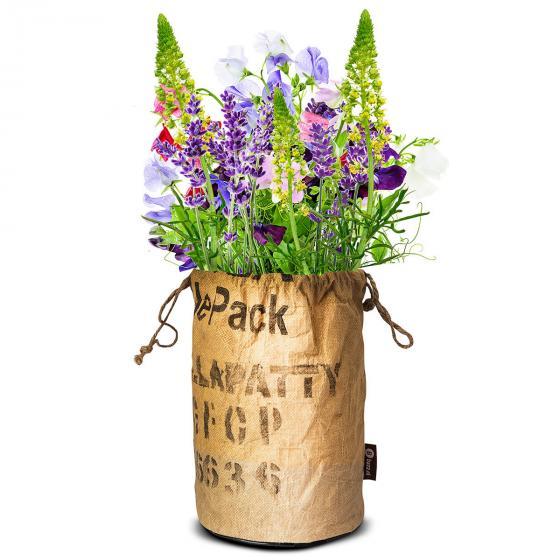 BIO Wildblumen mit Insektenhotel - VIOLETT | #2