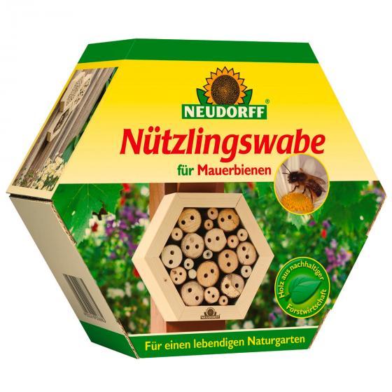 Insektenwabe Mauerbienen | #2