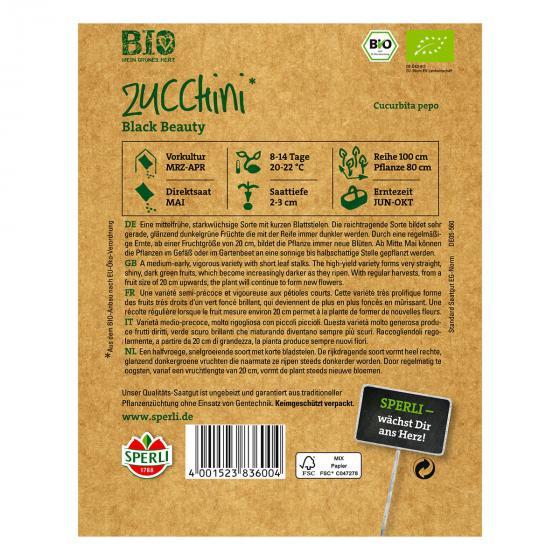 BIO Zucchinisamen Black Beauty | #2