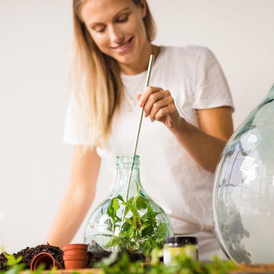 DIY Terrariumflasche mit Seitenöffnung, Komplettset, 3 Liter | #2