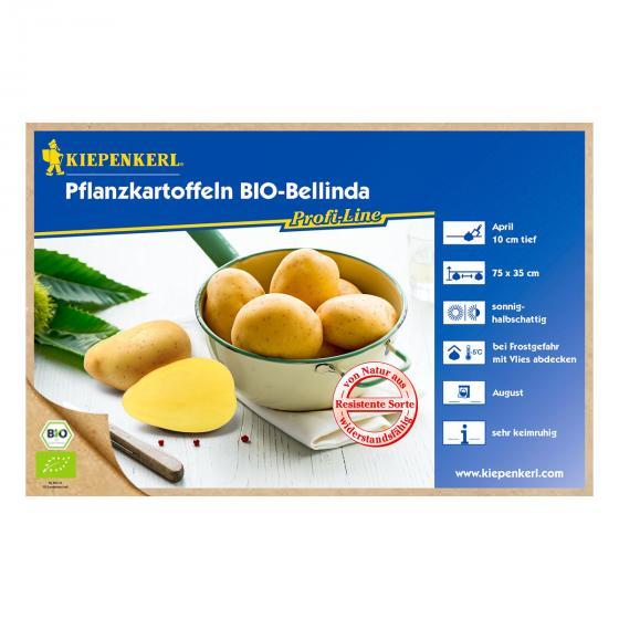 BIO Kartoffel Bellinda, 10 Stück | #2
