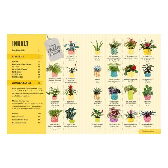 So überleben Zimmerpflanzen garantiert | #2
