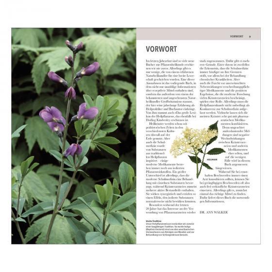 Heilpflanzen Kompaktlexikon von A-Z | #2