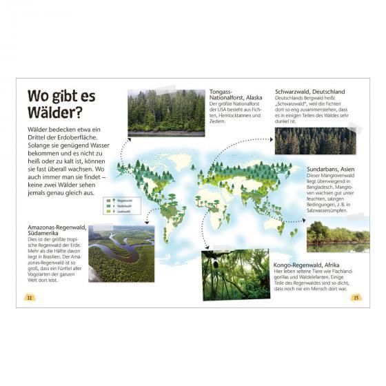 Naturführer für Kinder - Wald | #2