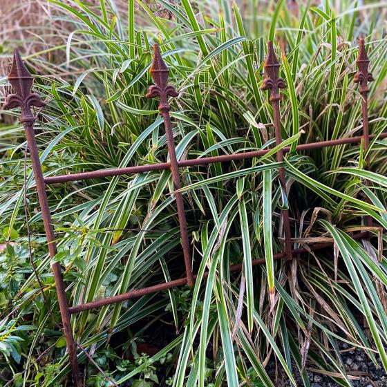 Gartenzaun Royal, Edelrost, ca. 49 cm | #2