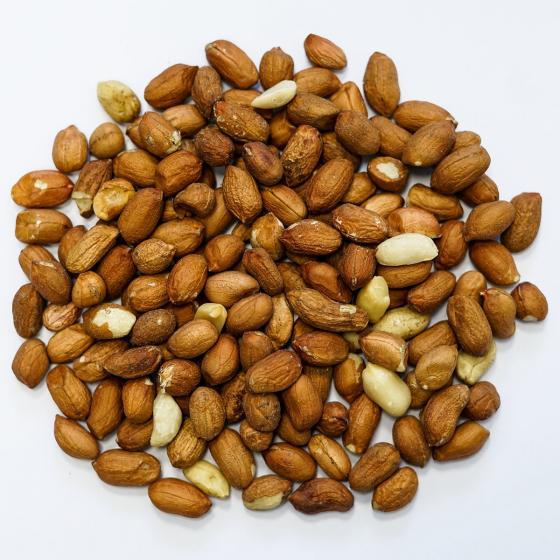 Rote Futter-Erdnüsse für Wildvögel, 750 g | #2
