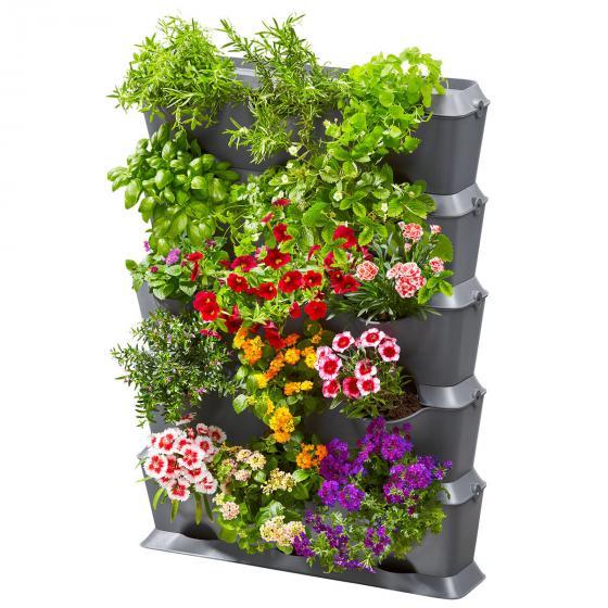 NatureUp! Set Vertikal mit Bewässerung | #2