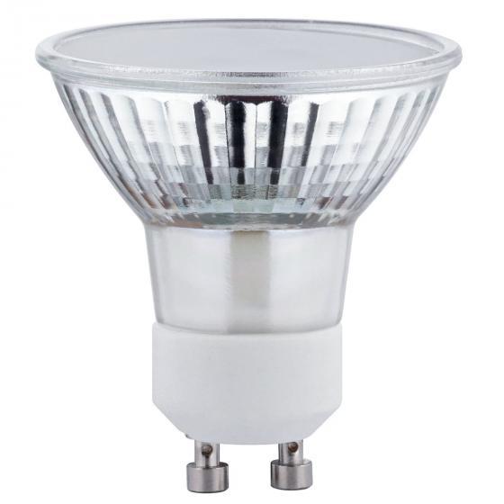 LED Plant GU10 3,5W 230V | #2